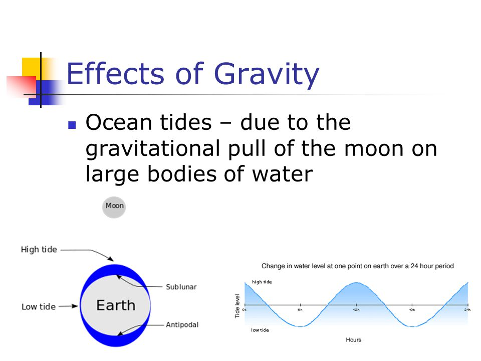 Effects of Gravity Ocean tides – due to the gravitational pull of the moon on large bodies of water