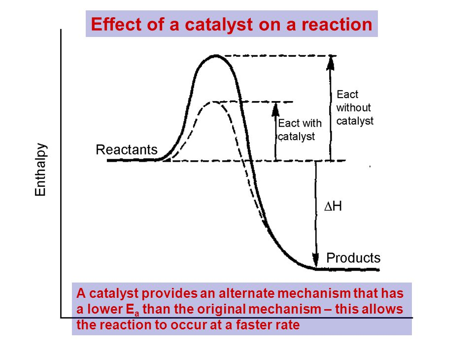 Effect of a catalyst on a reaction