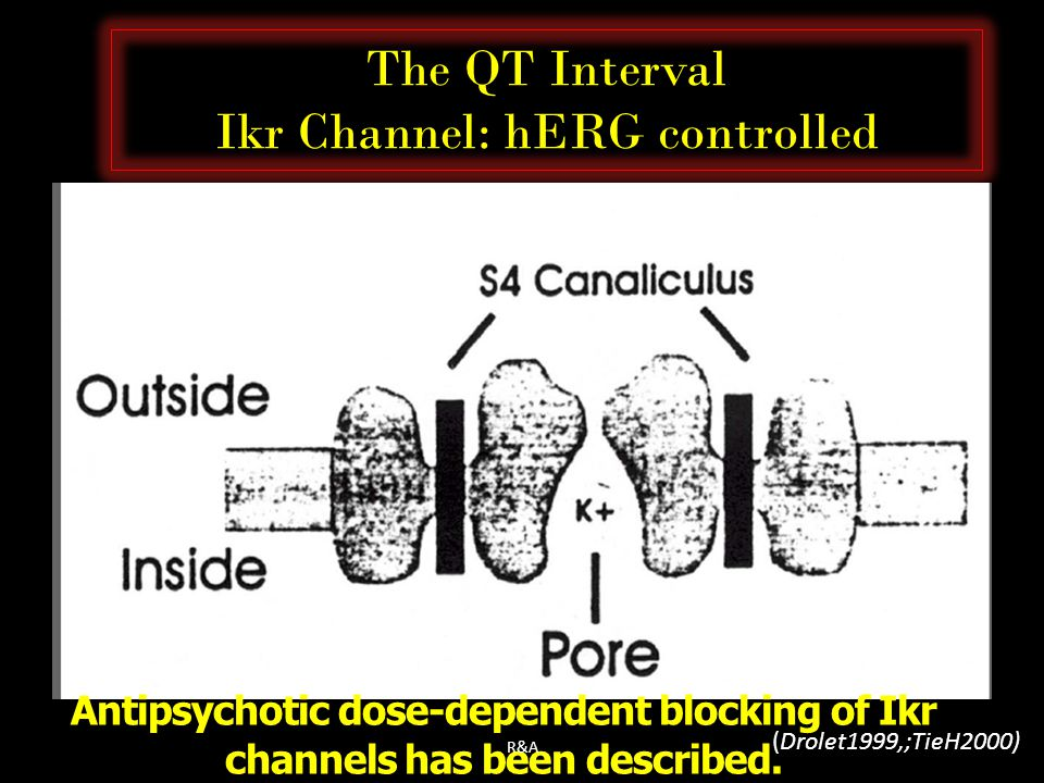 The QT Interval Ikr Channel: hERG controlled