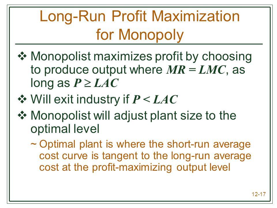Long-Run Profit Maximization for Monopoly