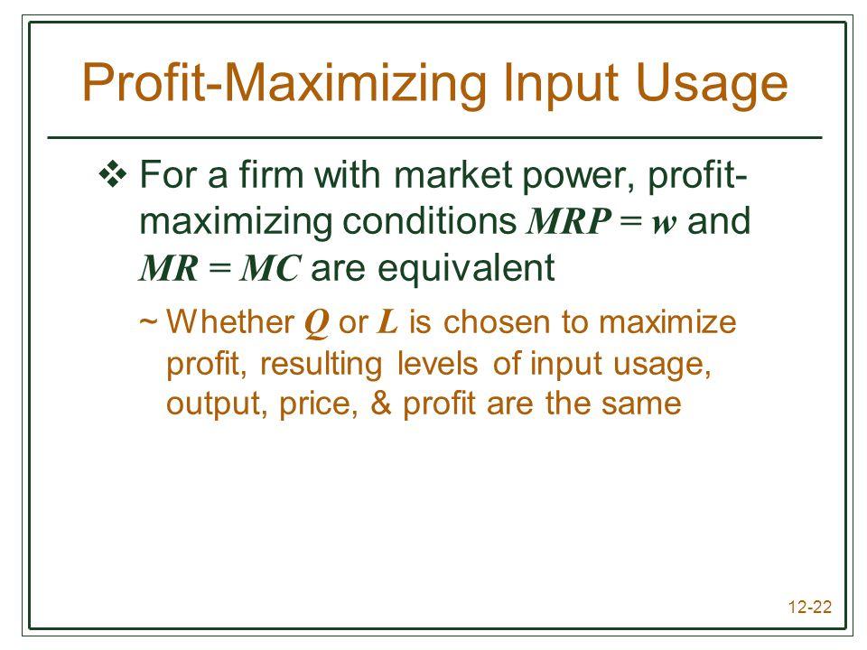 Profit-Maximizing Input Usage