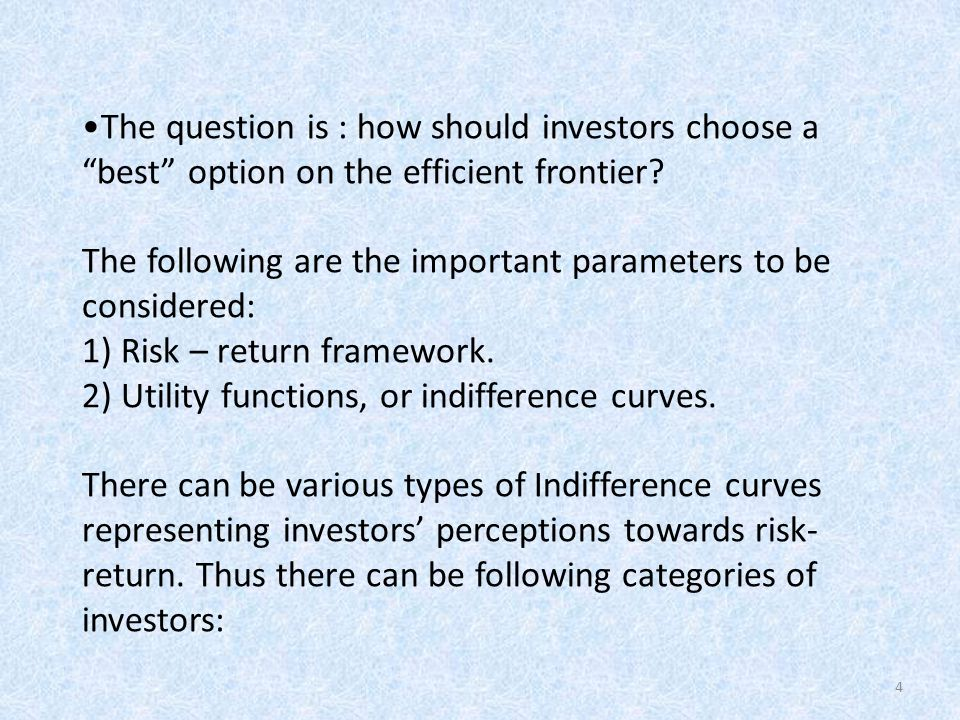 The question is : how should investors choose a best option on the efficient frontier.