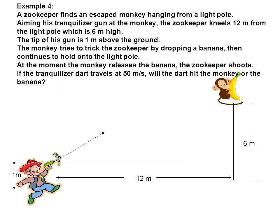 Example 4: A zookeeper finds an escaped monkey hanging from a light pole. Aiming his tranquilizer gun at the monkey, the zookeeper kneels 12 m from the light pole which is 6 m high. The tip of his gun is 1 m above the ground. The monkey tries to trick the zookeeper by dropping a banana, then continues to hold onto the light pole. At the moment the monkey releases the banana, the zookeeper shoots. If the tranquilizer dart travels at 50 m/s, will the dart hit the monkey or the banana