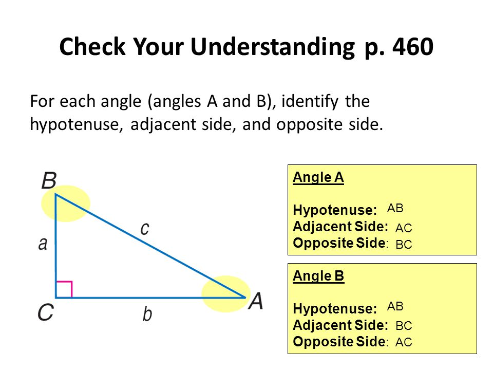 Check Your Understanding p. 460