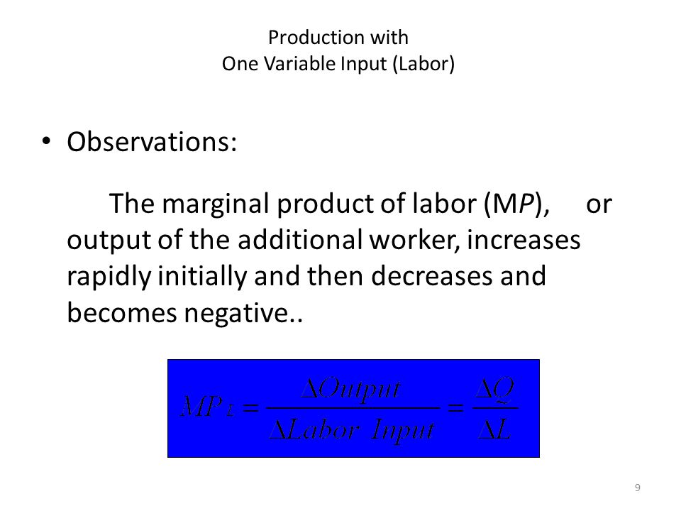 Production with One Variable Input (Labor)