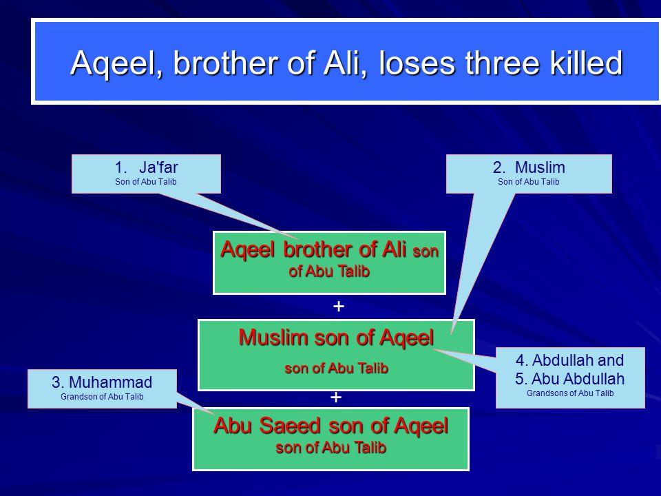 Aqeel, brother of Ali, loses three killed