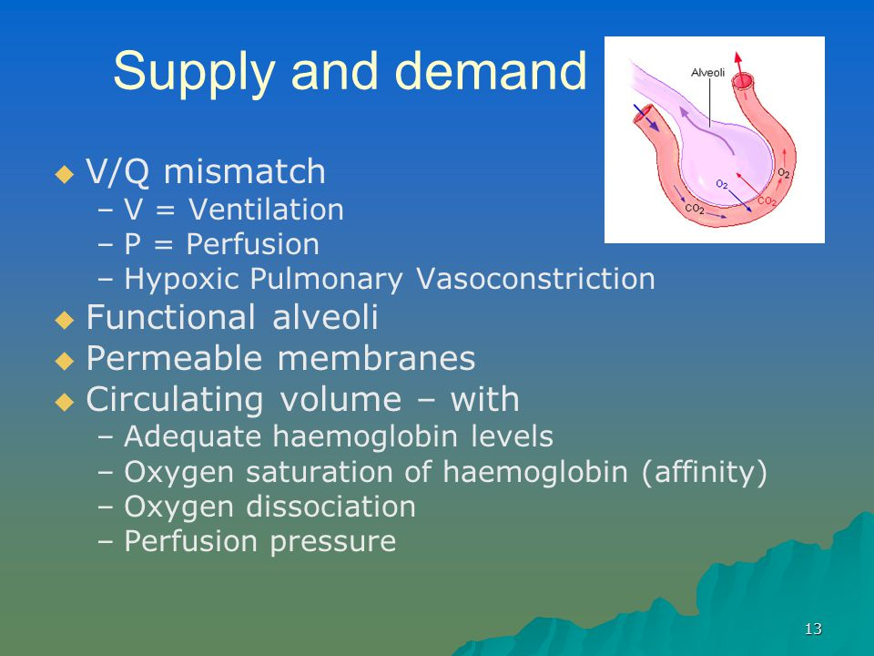 Supply and demand V/Q mismatch Functional alveoli Permeable membranes
