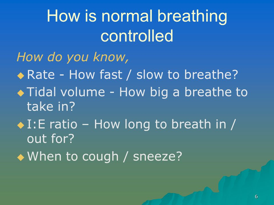 How is normal breathing controlled