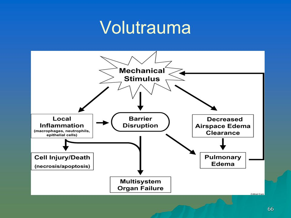 Mechanical Ventilation Amp Strategies For Oxygenation Ppt