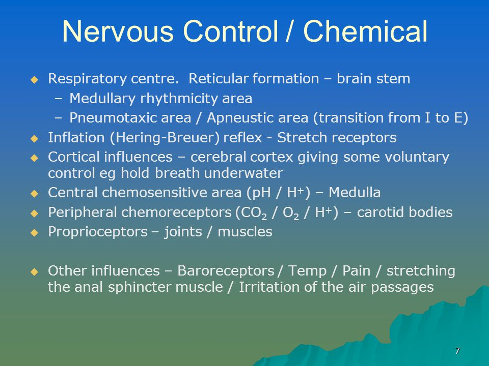 Nervous Control / Chemical