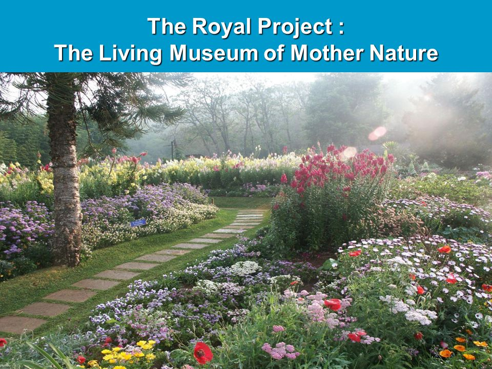 The Living Museum of Mother Nature