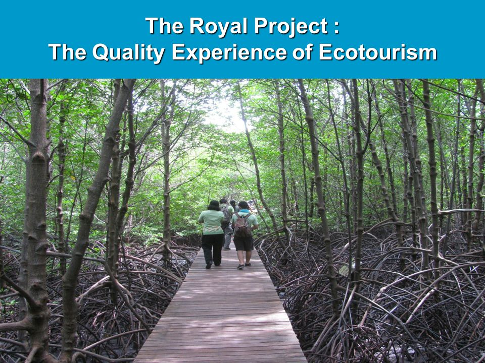 The Quality Experience of Ecotourism
