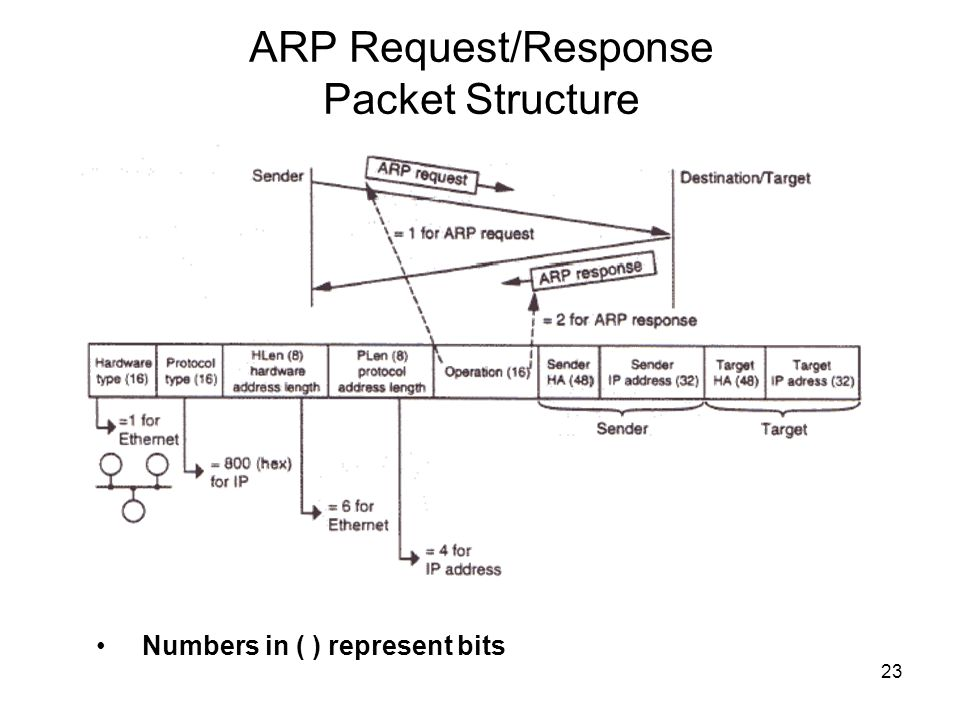 ARP Request/Response Packet Structure