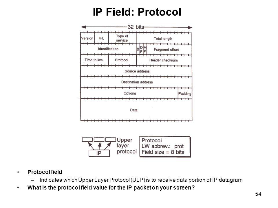 IP Field: Protocol Protocol field