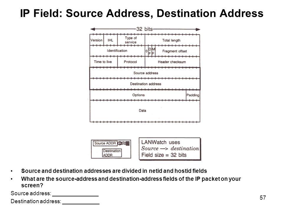 IP Field: Source Address, Destination Address