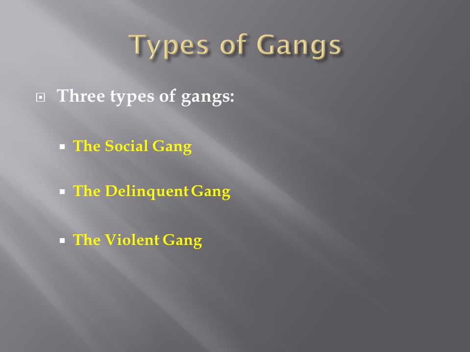 Types of Gangs Three types of gangs: The Social Gang