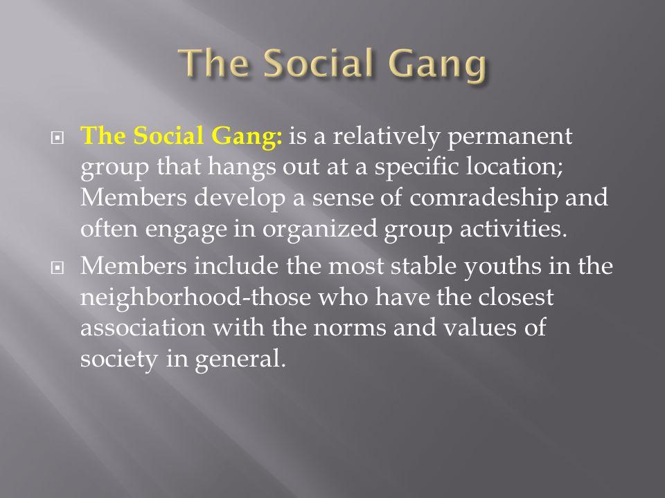 The Social Gang