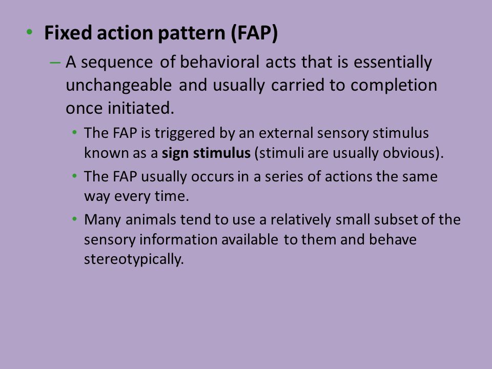 Fixed action pattern (FAP)