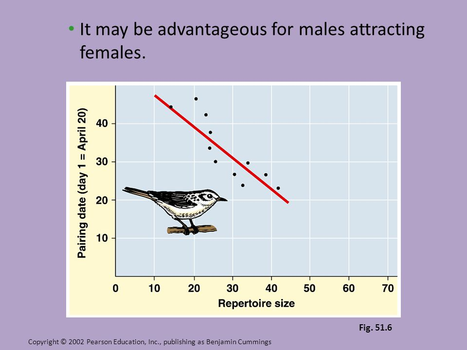 It may be advantageous for males attracting females.