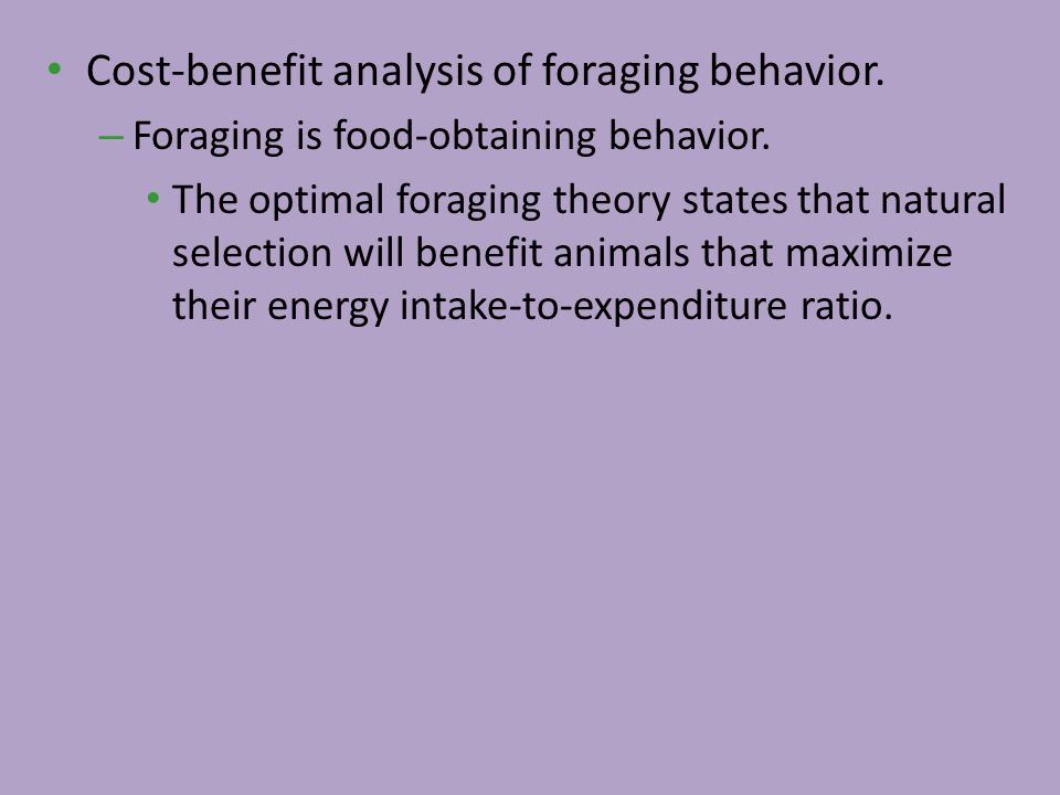 Cost-benefit analysis of foraging behavior.