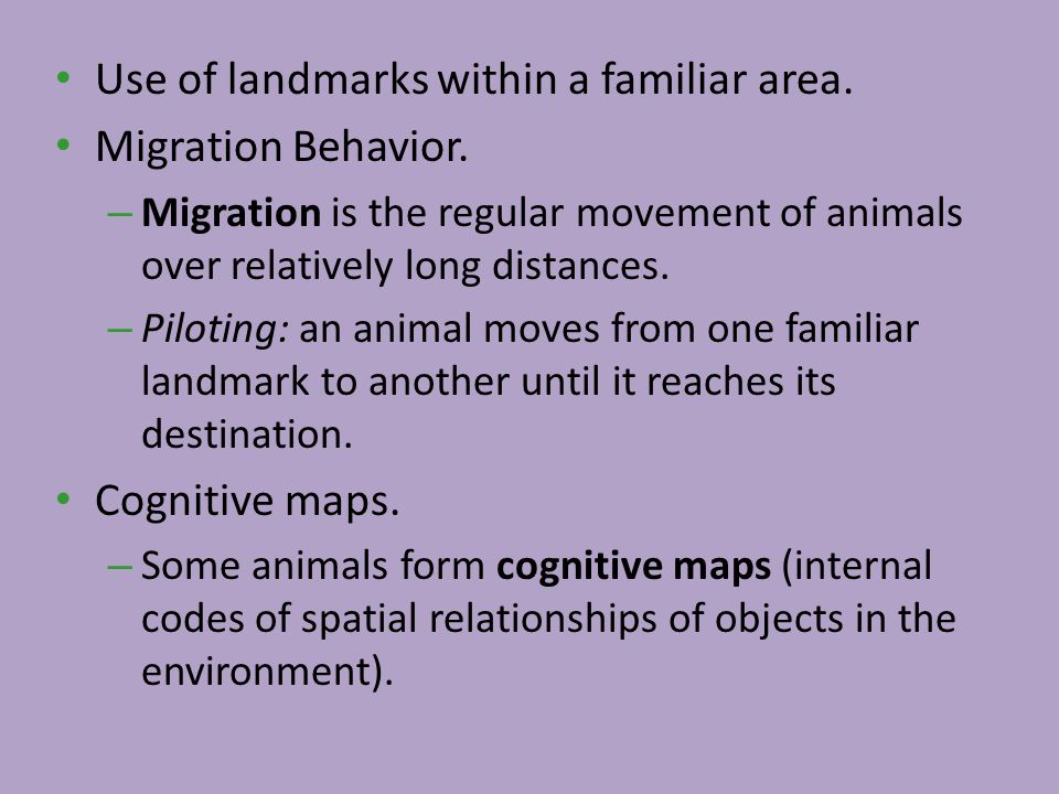 Use of landmarks within a familiar area. Migration Behavior.