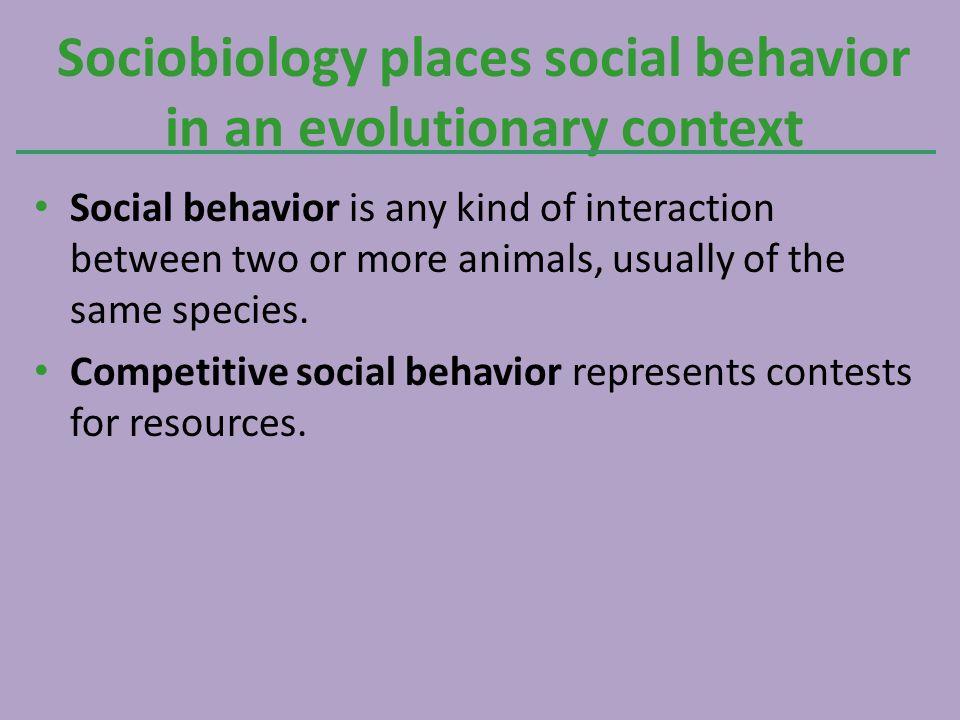 Sociobiology places social behavior in an evolutionary context
