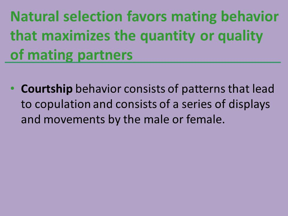 Natural selection favors mating behavior that maximizes the quantity or quality of mating partners