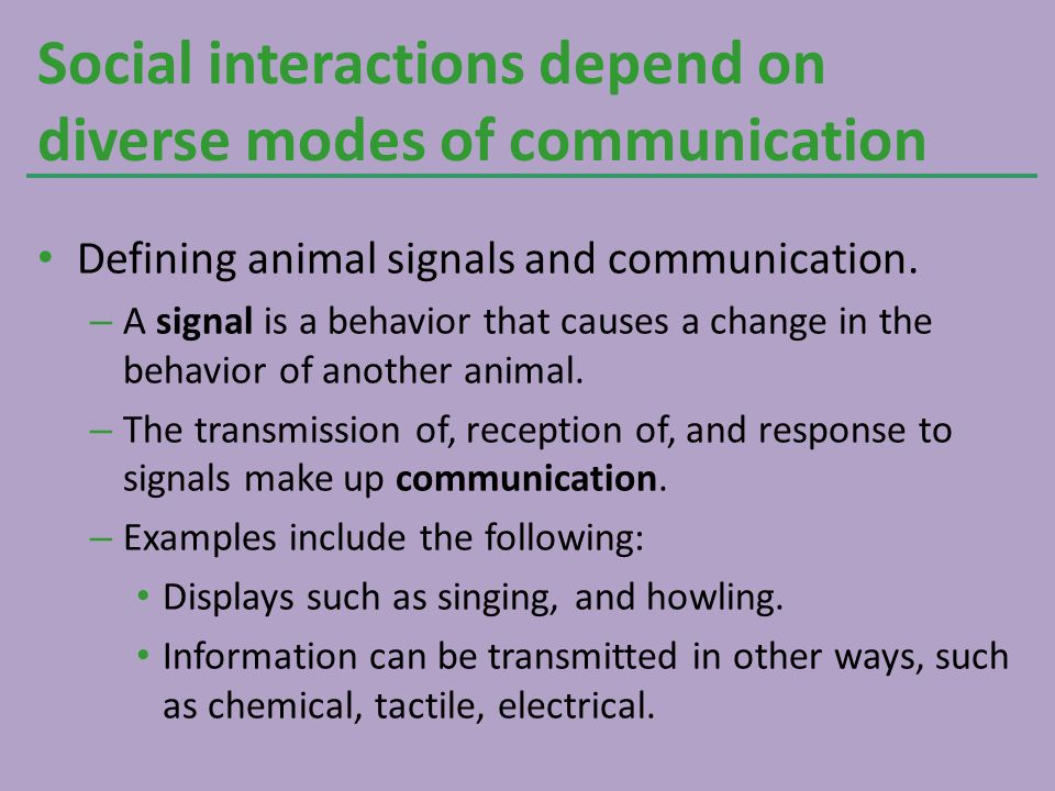 Social interactions depend on diverse modes of communication