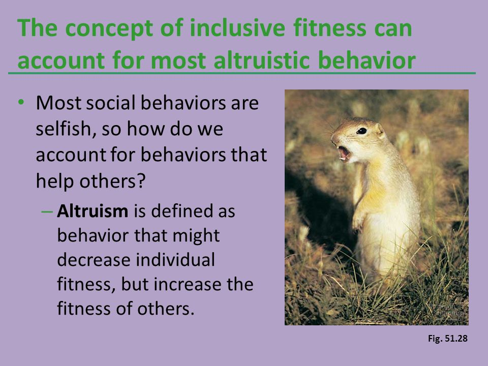 The concept of inclusive fitness can account for most altruistic behavior
