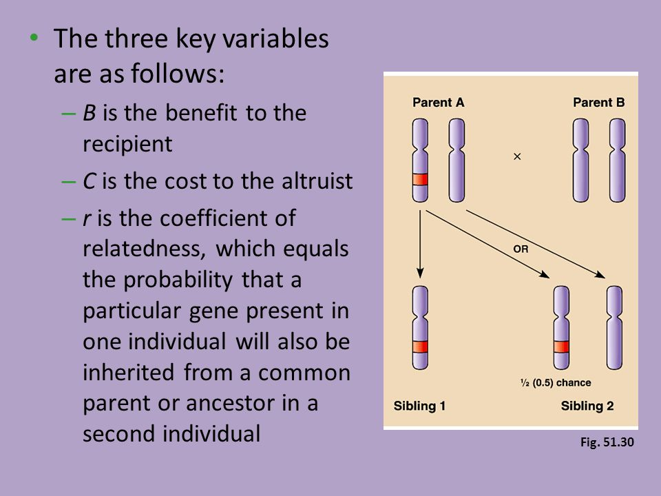 The three key variables are as follows: