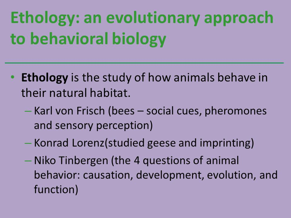Ethology: an evolutionary approach to behavioral biology