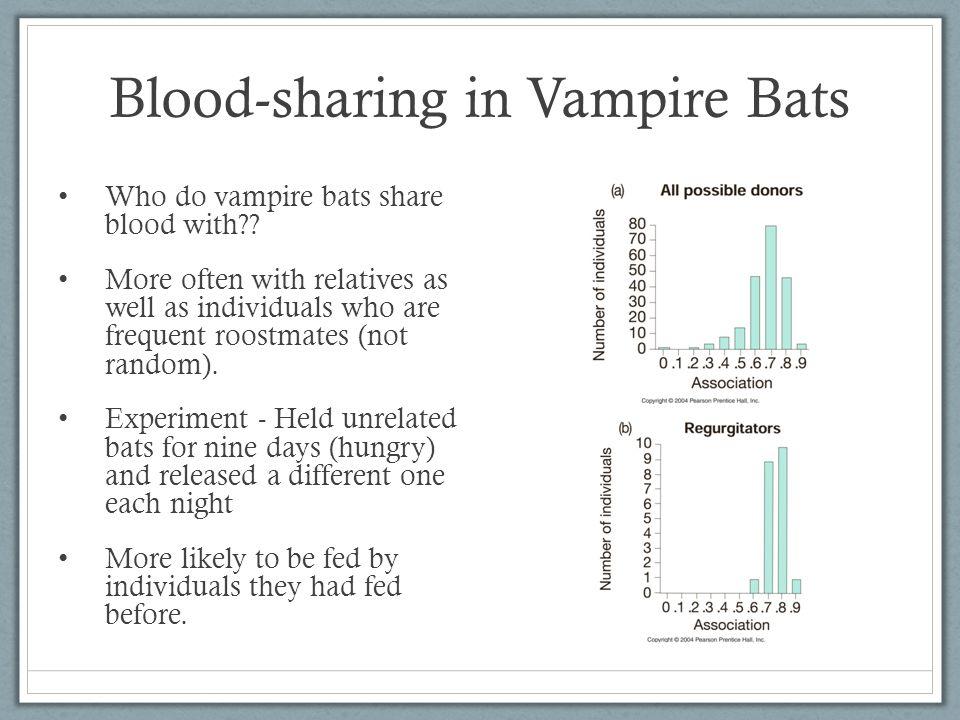 Blood-sharing in Vampire Bats