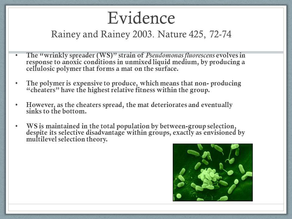 Evidence Rainey and Rainey 2003. Nature 425, 72-74