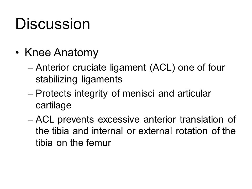 Discussion Knee Anatomy