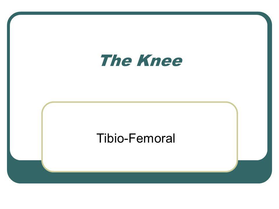 The Knee Tibio-Femoral