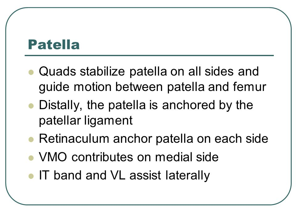 Patella Quads stabilize patella on all sides and guide motion between patella and femur. Distally, the patella is anchored by the patellar ligament.
