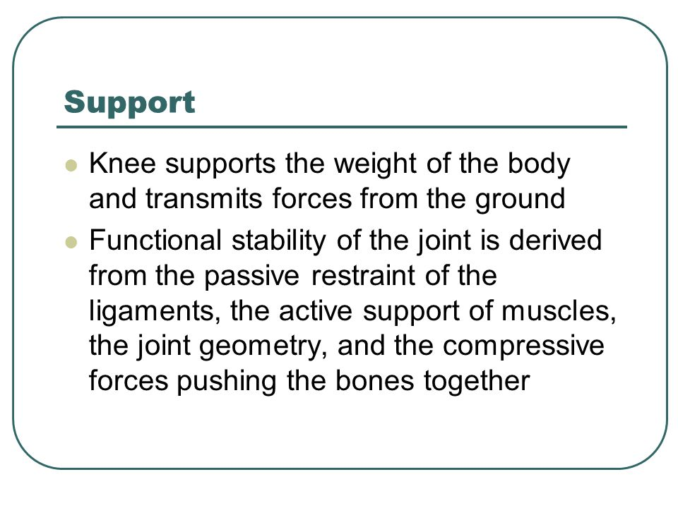 Support Knee supports the weight of the body and transmits forces from the ground.