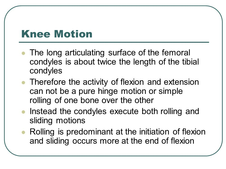 Knee Motion The long articulating surface of the femoral condyles is about twice the length of the tibial condyles.