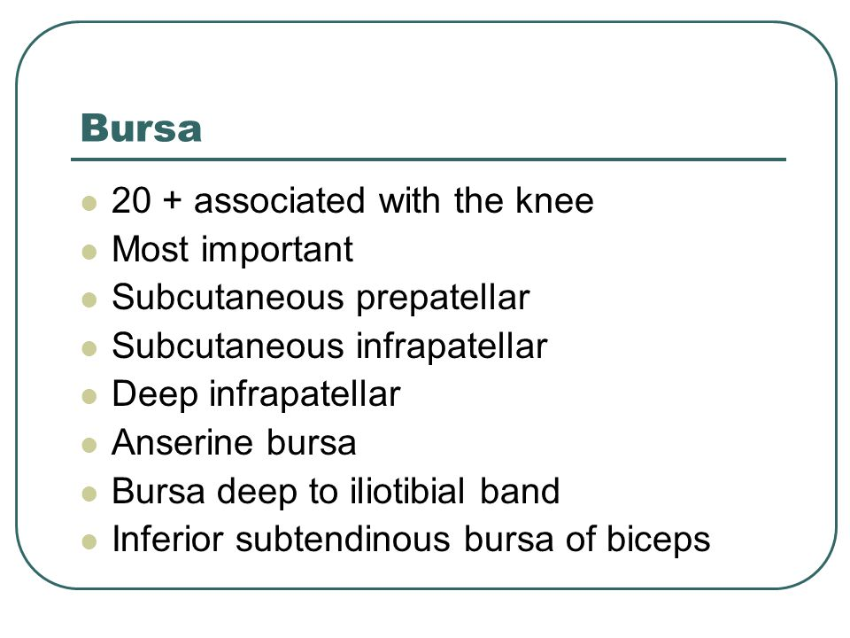 Bursa 20 + associated with the knee Most important