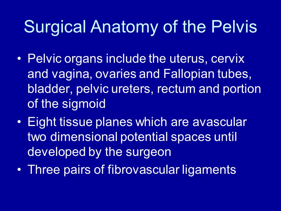 Surgical Anatomy of the Pelvis
