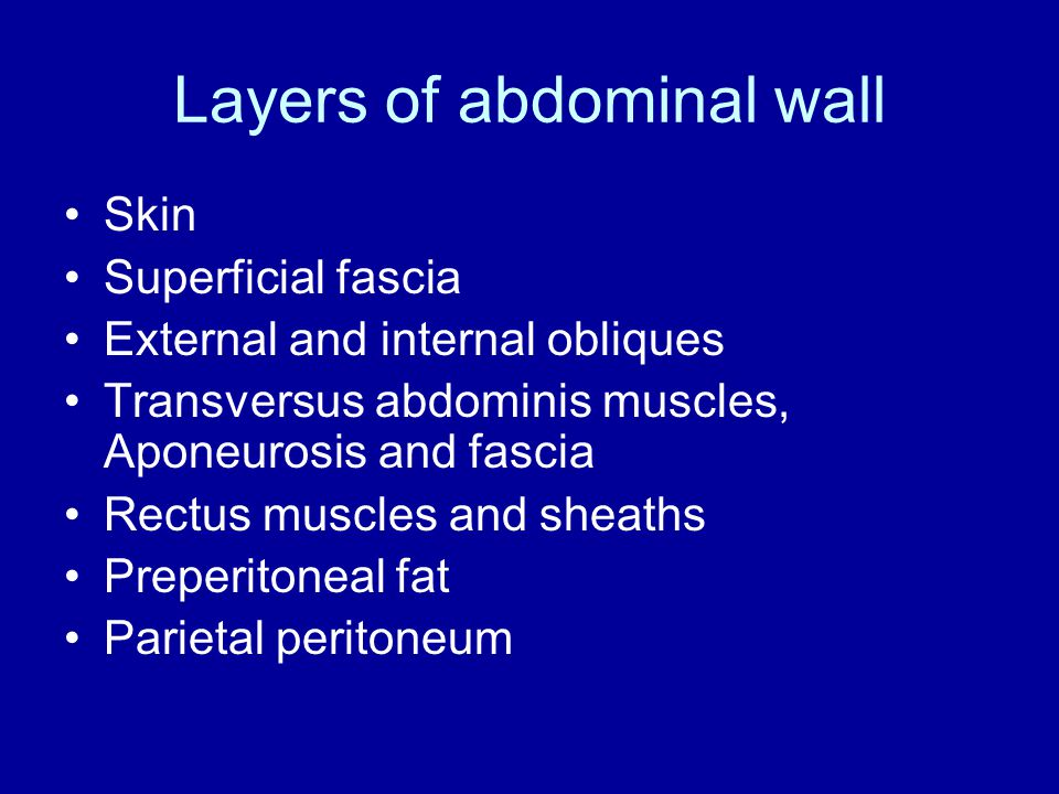 Layers of abdominal wall