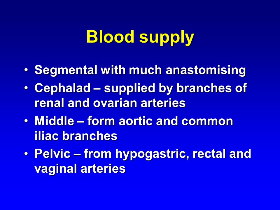 Blood supply Segmental with much anastomising