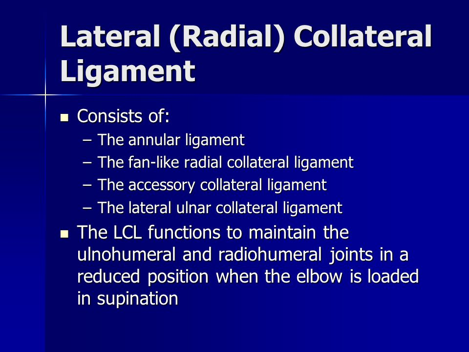 Lateral (Radial) Collateral Ligament
