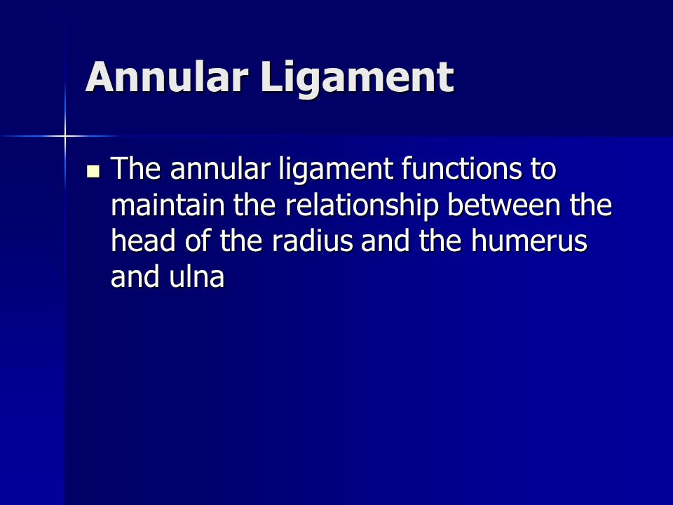 Annular Ligament The annular ligament functions to maintain the relationship between the head of the radius and the humerus and ulna.