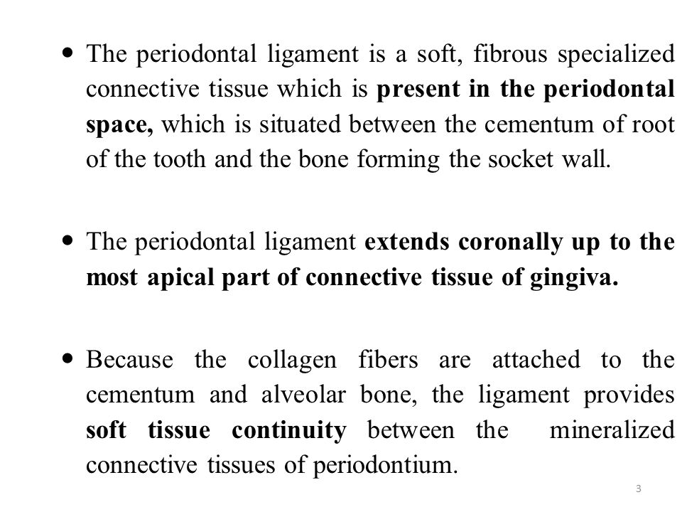 The periodontal ligament is a soft, fibrous specialized connective tissue which is present in the periodontal space, which is situated between the cementum of root of the tooth and the bone forming the socket wall.
