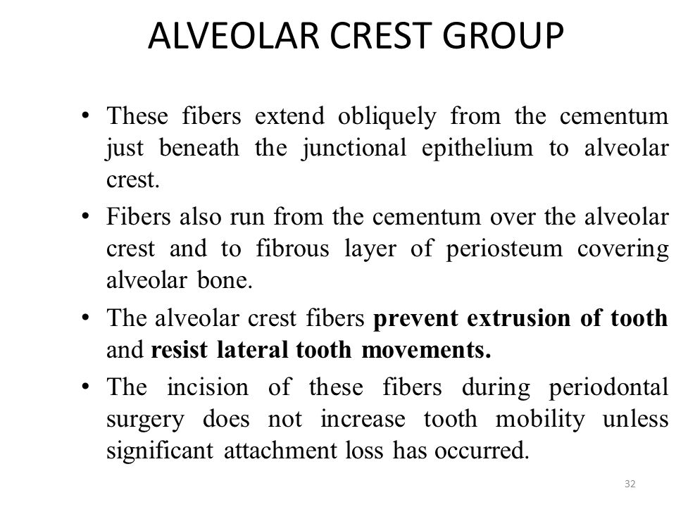 ALVEOLAR CREST GROUP These fibers extend obliquely from the cementum just beneath the junctional epithelium to alveolar crest.