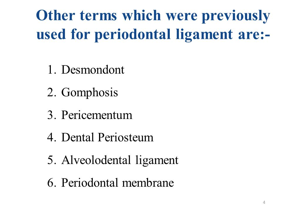 Other terms which were previously used for periodontal ligament are:-