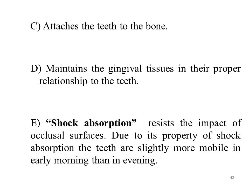 C) Attaches the teeth to the bone.