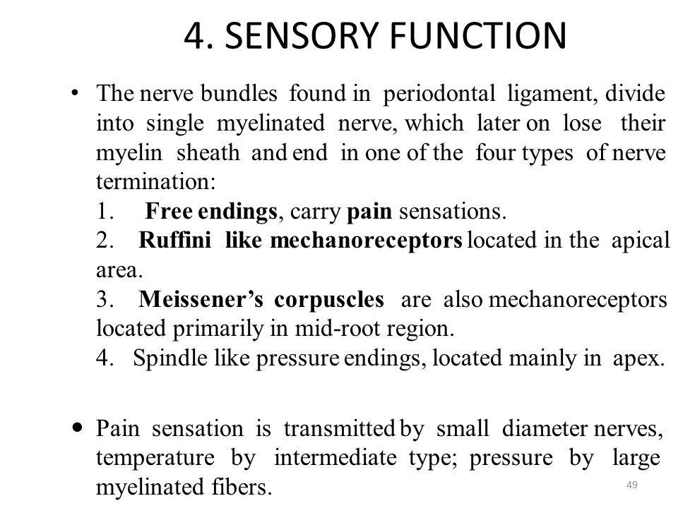 4. SENSORY FUNCTION