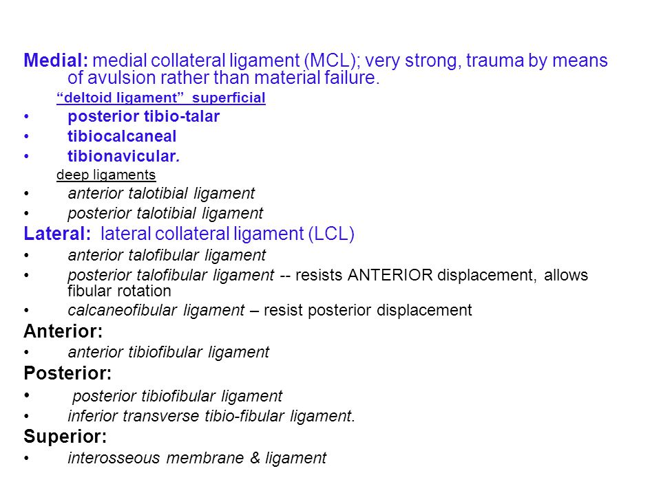 Lateral: lateral collateral ligament (LCL)